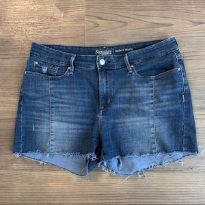 Levi's Distressed Jean High Rise Shorts Size 14/32